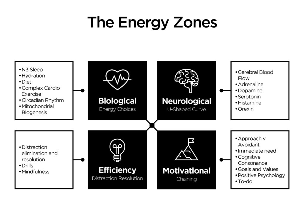 fatigue, personal energy, vitality